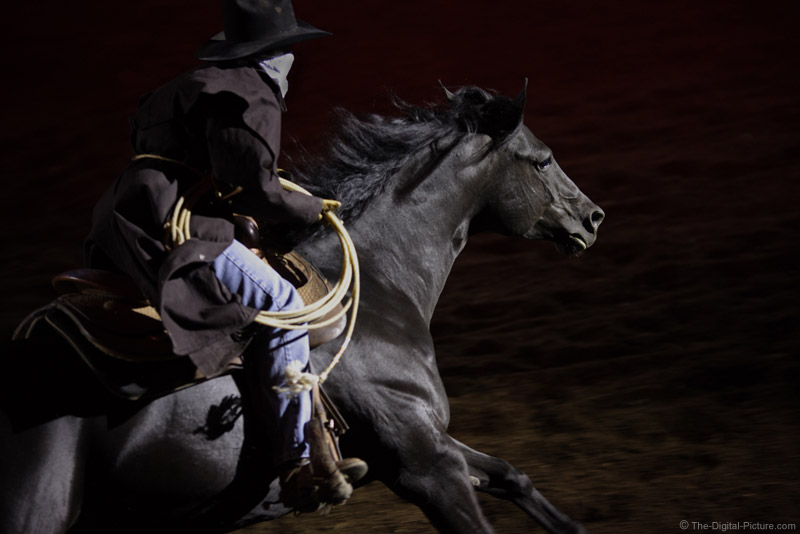 Rider on Black Horse Picture