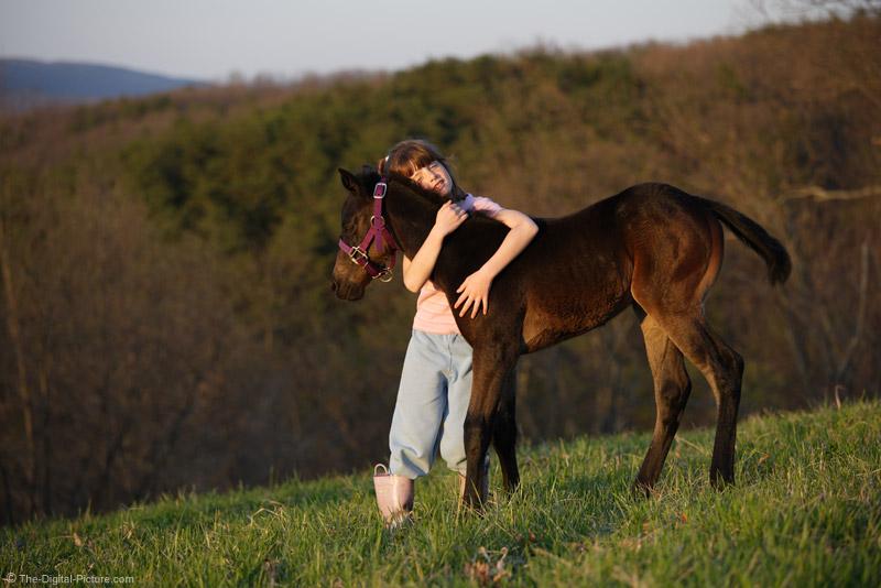 Girl Hugging Baby Horse