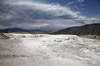 Terrace at Mammoth Hot Springs