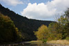 Pine Creek Landscape Picture