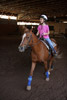 Horseback Riding in an Indoor Ring Picture
