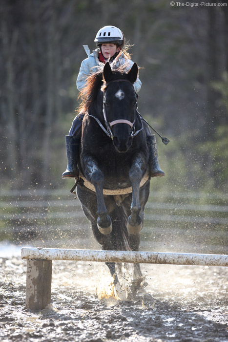 Horse Jumping in the Mud