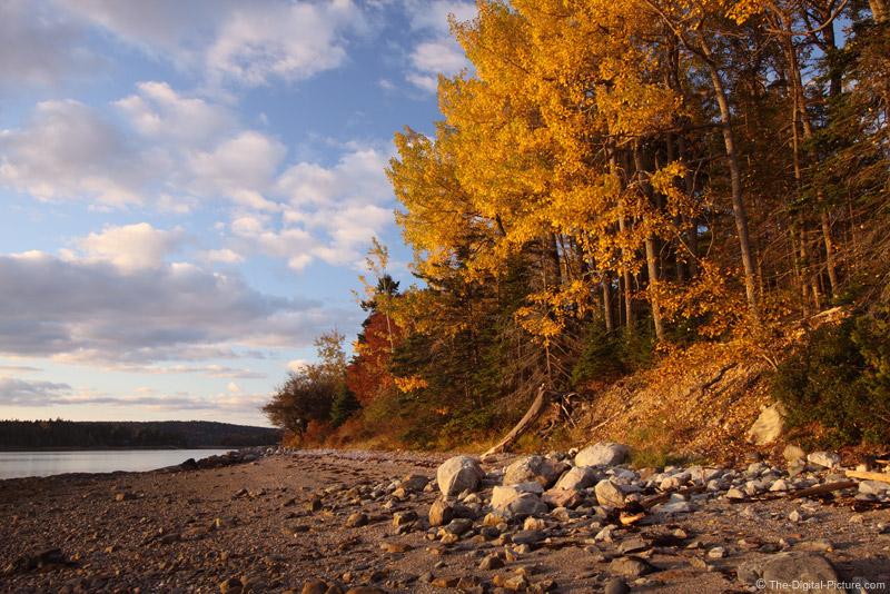 Pretty Marsh, Acadia National Park, Maine