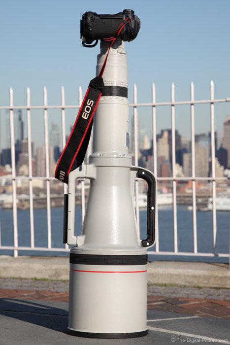 Canon EF 1200mm f/5.6 L USM Lens in the Park