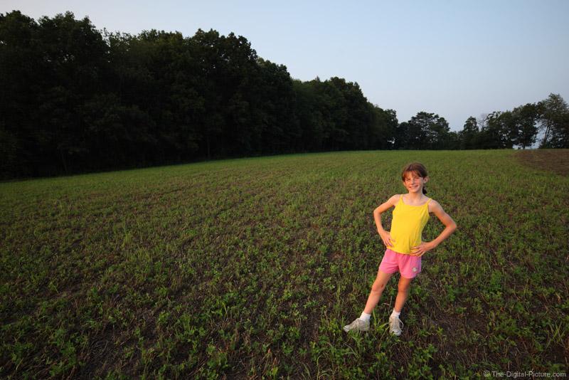 Portrait in a Field II