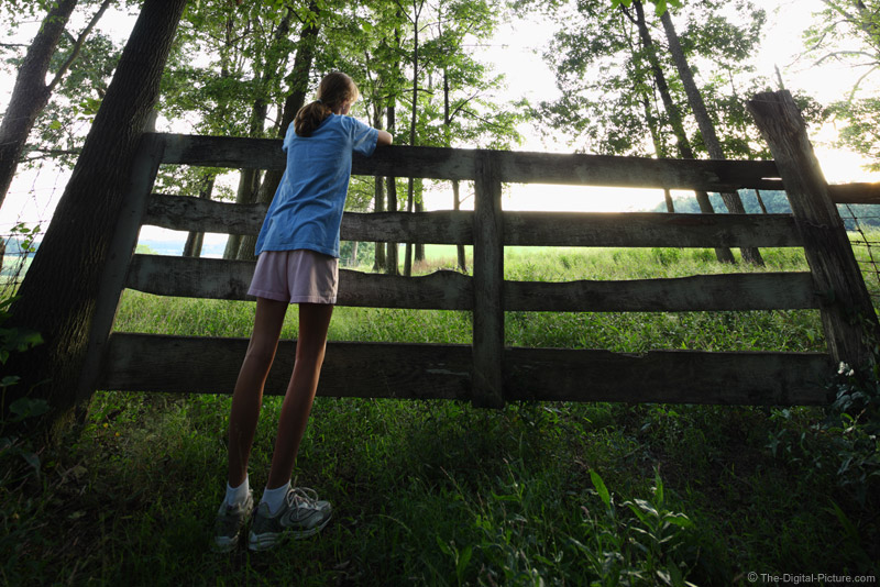 Girl by a Fence
