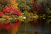 Asticou Azalea Gardens in the Fall