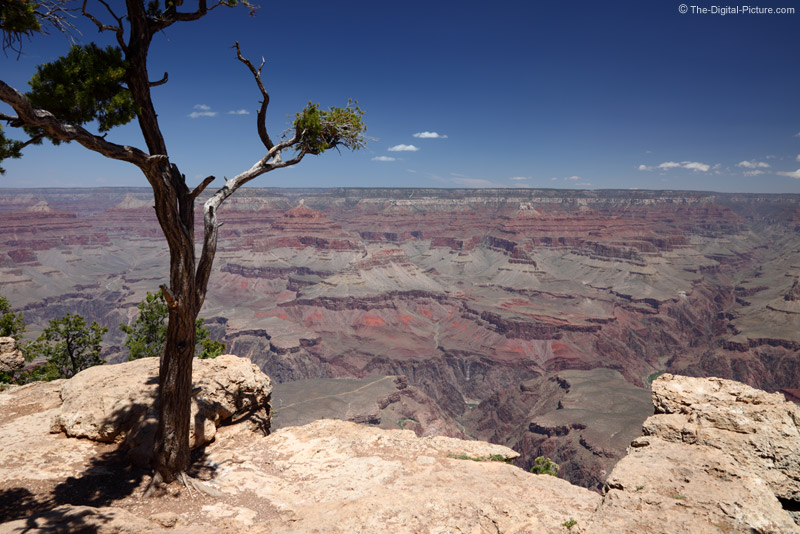 Grand Canyon Rim Picture