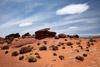 Desert Landscape Near Horseshoe Bend