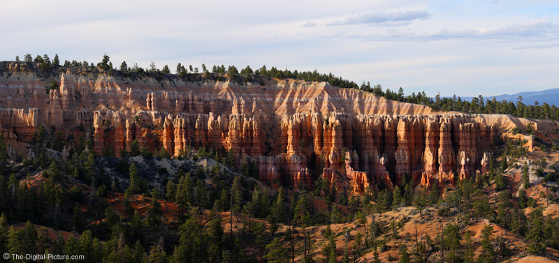 Bryce Canyon National Park Panaroma