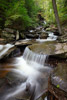 Small Ricketts Glen Waterfall