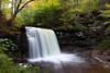 Ricketts Glenn State Park, PA
