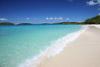 High Sun Over Honeymoon Beach, Salomon Bay, St. John