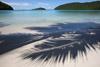 Palm Shadows on Beach at Maho Bay