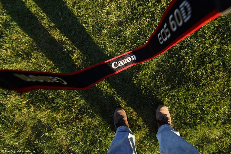 Cameras Strap Picture