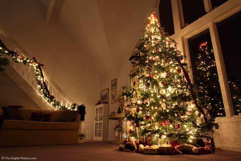 Christmas Tree Picture with Perspective