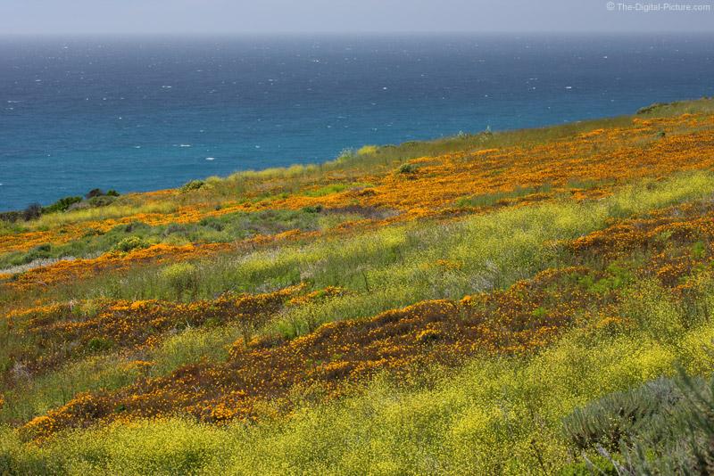 Waves of Color, Big Sur