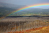 Rainbow Over St Mary, Montana