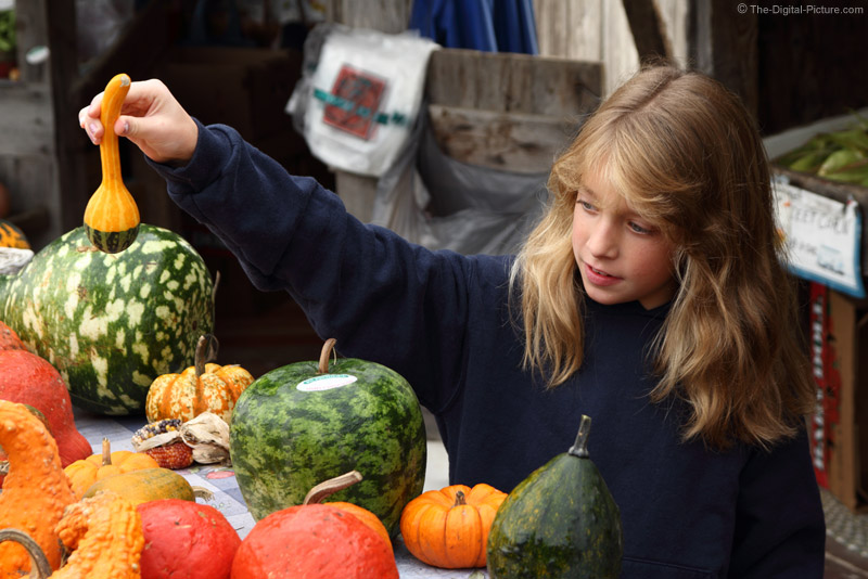 Selecting the Perfect Gourd
