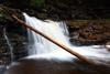Log in Cayuga Falls