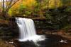 Harrison Wright Falls, Ricketts Glen State Park