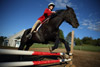 Close Perspective Horse Jumping