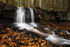 Upper Dutchman Falls, Worlds End State Park