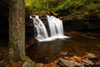 Wyandot Falls, Ricketts Glen SP