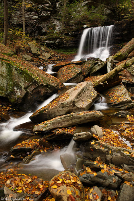 B. Reynolds Falls in the Fall