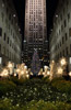 Rockefeller Center Decorated for Christmas