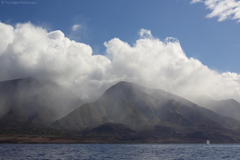 West Maui Whale Breach