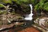 Adams Falls, RGSP