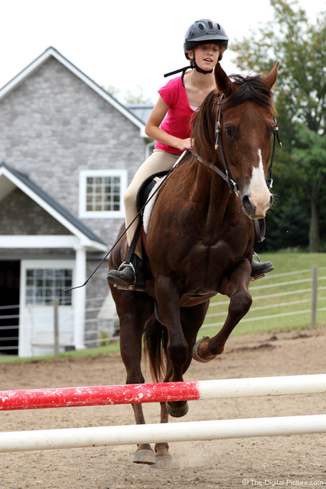 Canon EOS 70D Jumping Horse Challenge