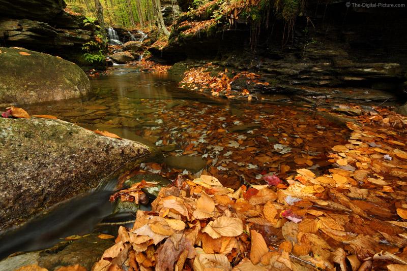 Rock Run Leaf Dam