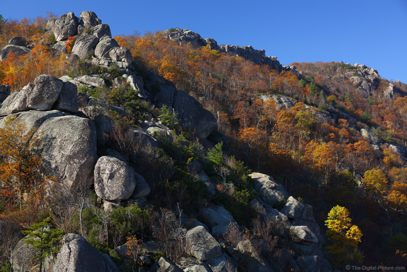 Old Rag Mountain Rockscape