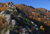 Old Rag Mountain Rockscape