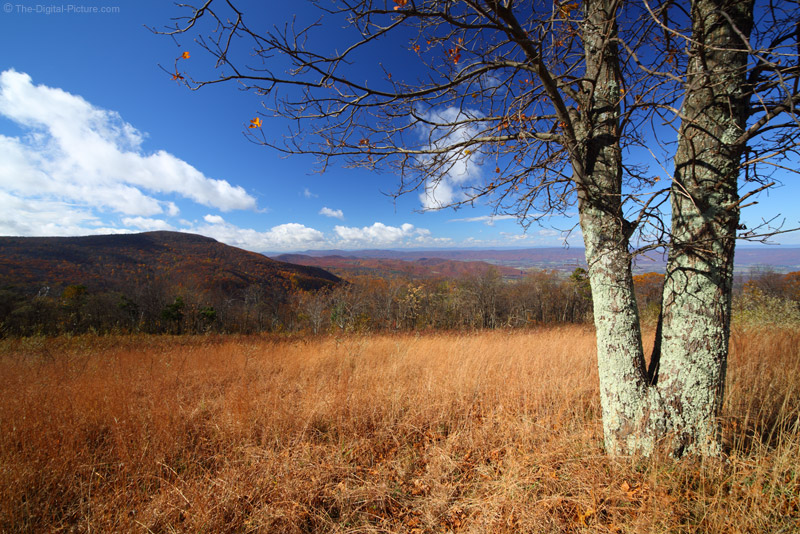 Late Fall in Shenandoah National Park