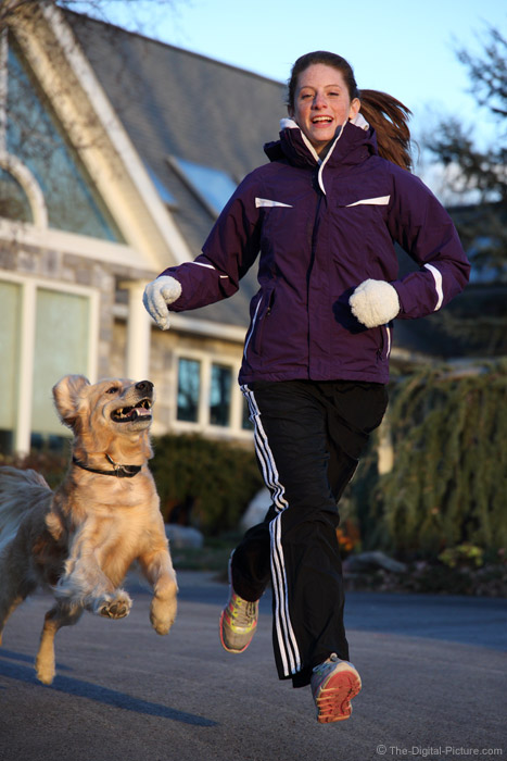 Winter Running with the Dog
