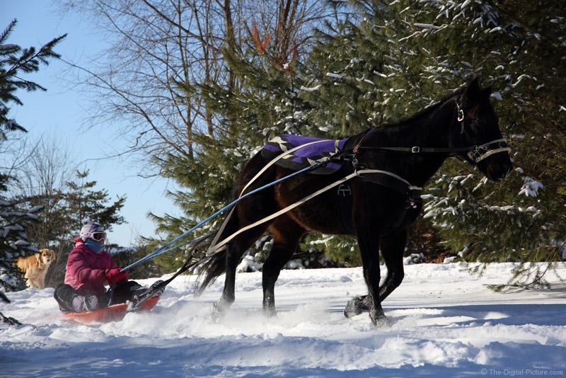 Sledding Behind a Horse