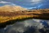 Reflections at Independence Pass, Colorado