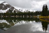 Trout Surfacing in Alta Lakes, Telluride, CO