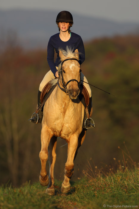 How to Stop a Galloping Horse with the Canon EOS 7D Mark II