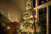 The 10-Step Recipe for a Christmas Tree Photo