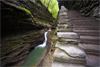 It's All About the Lines, Watkins Glen State Park