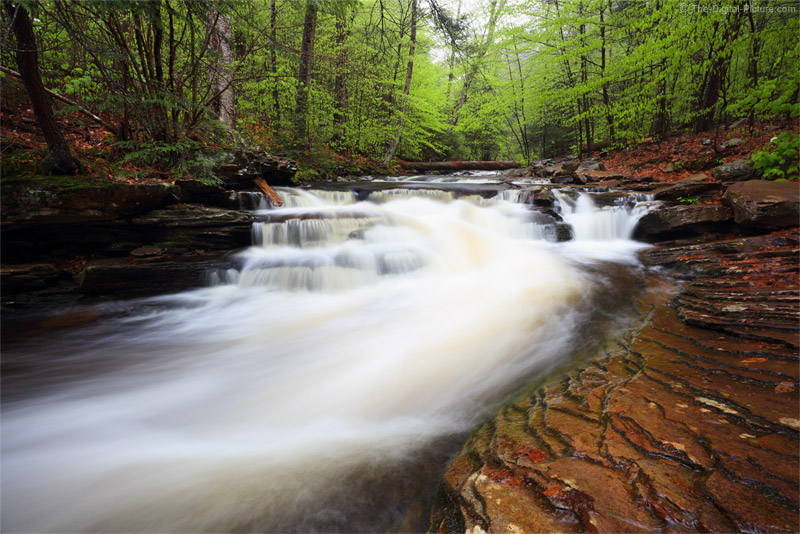 Camera Height Matters, Cascade in Ricketts Glen State Park