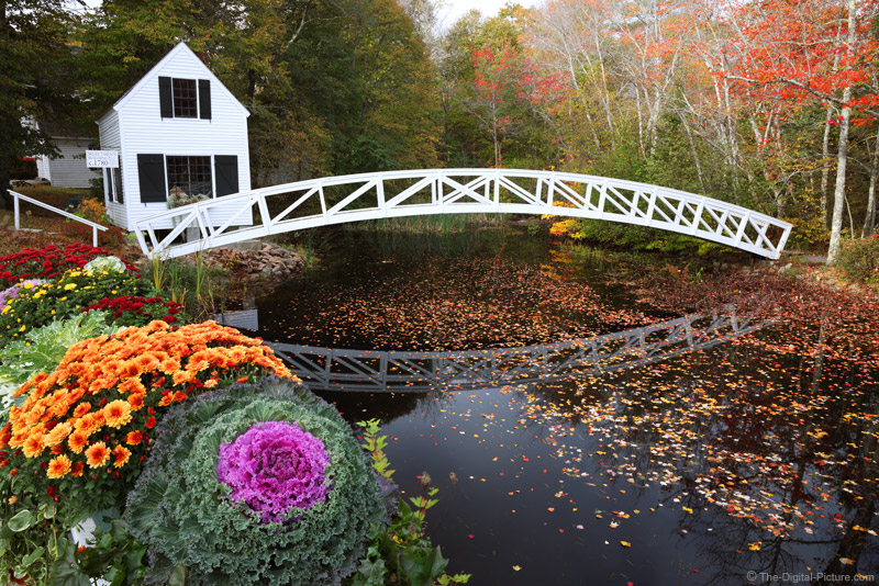 Canon EOS R5 Focus Stacking at the Somesville Bridge and Selectmen's Building