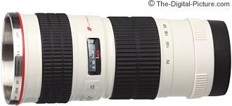 Canon EF 70-200mm f/4.0 L USM Lens Mug