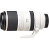 Canon RF 100-500mm F4.5-7.1 L IS USM Lens