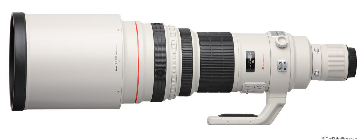 Canon EF 600mm f/4L IS USM Lens